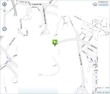 פורשים מפה ירוקה ירושלמית