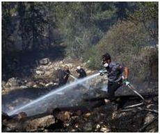 כבאים משתלטים על שרפה ליד גינות סחרוב בכניסה לירושלים